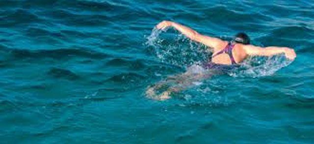 酒。。時々飲んで!(*^。^*) 思いっきり、楽しいことしよう(^_^)v  中高年からの水泳 第17回 流れるようにバタフライを泳ぎたい人の為の動画1~3コメントトラックバック                ロンちゃん
