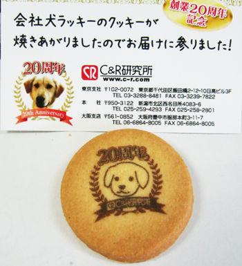 luckyクッキー