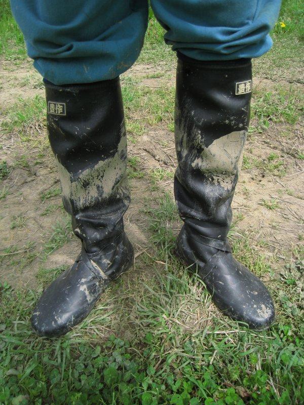 田植え 長靴