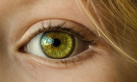 eye-1132531_640