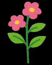 flower_seichou7