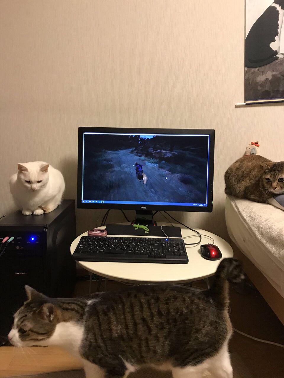うちのパソコン周り晒すwwwwwwwww