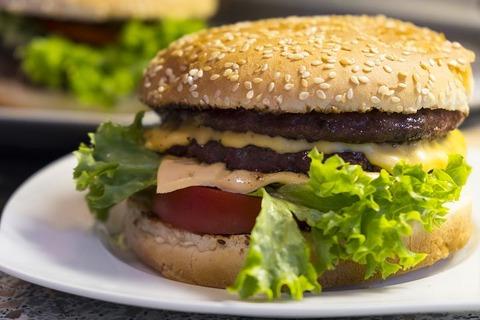 burger-2710511__480