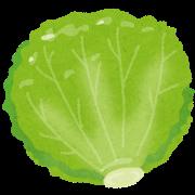food_lettuce (1)