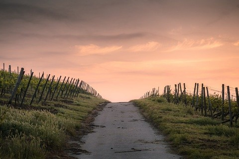 countryside-1835847_640
