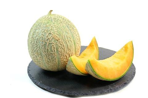 melon-2314618__480