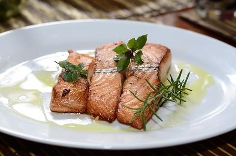 salmon-774482__340