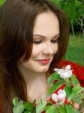 flowers-989415__480