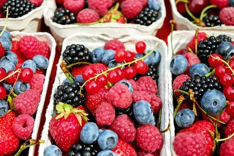 berries-1546125__480
