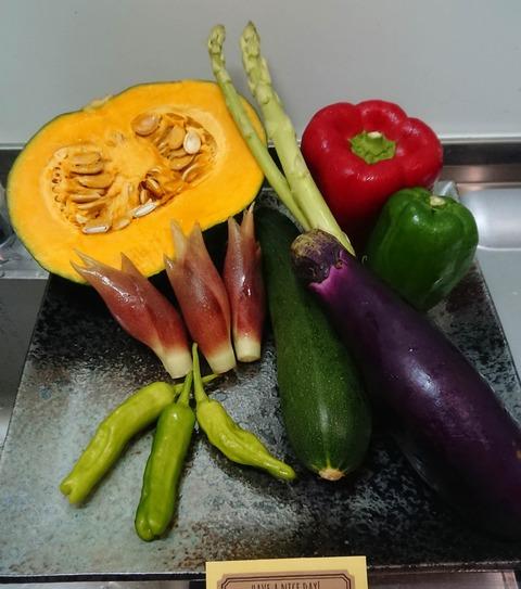 【料理】夏野菜を使って料理作るよ