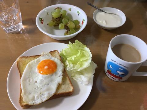 オレんちの朝食これwwwwwwwwww毎回ワンパターンwwwwww