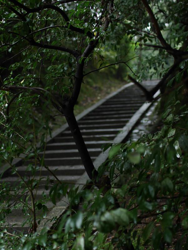 CHISHAKUIN_RAIN-7