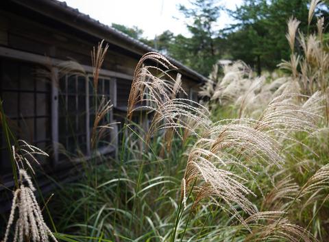 SHIGARAKI_YAKIMONO-5