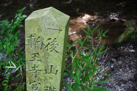 HYUGA_YAMASHINA-7230