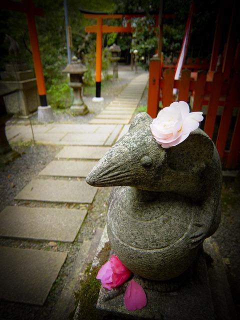 KYOTO_OHTOYO_INS-3