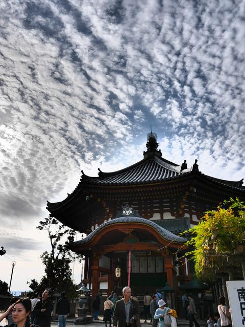 NARA_JAPAN-9