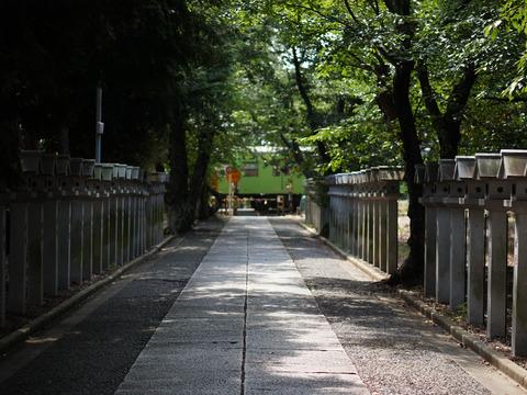 JOYO_MITOJINJA-9