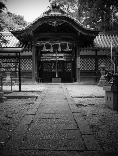 IKARUGAJINJA_HORYUJI-5
