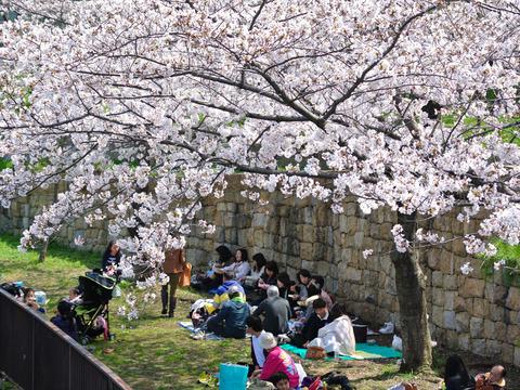 HANAMIRU_HITOTACHI-5