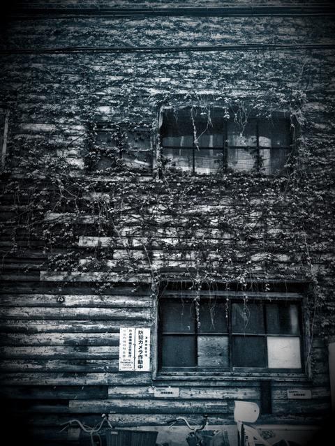 HARUNOARASHI2-2