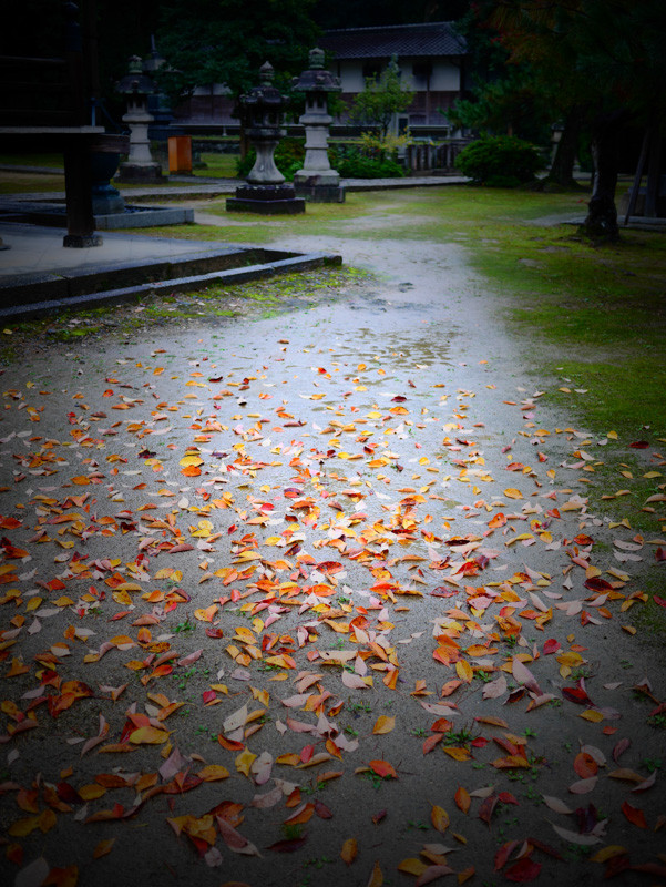 CHISHAKUIN_RAIN-6