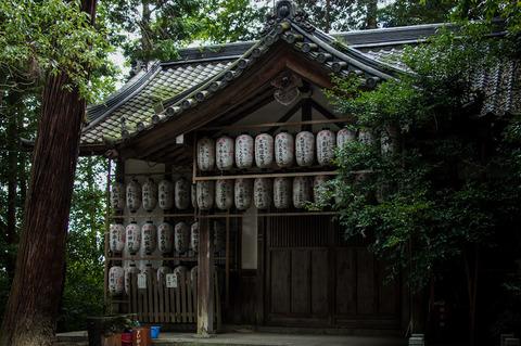 HACHI_JINJA-09610