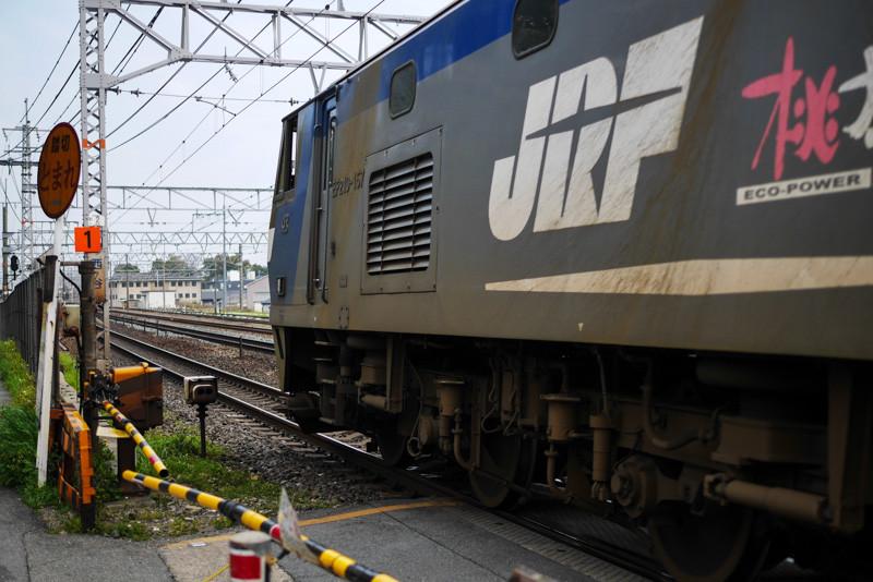 JR_YAMAZAKI_ST-6