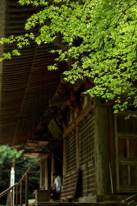 MUROUJI_NYONINKOYA-08163