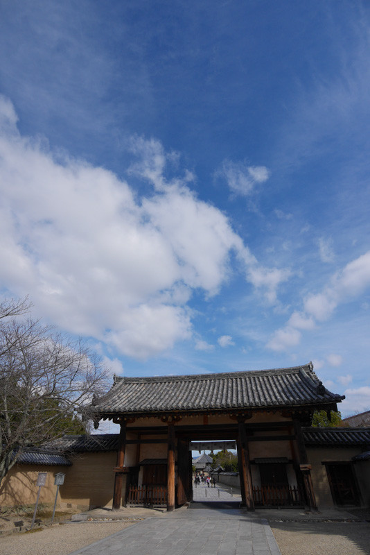 Horyuji_Yumedono2-1