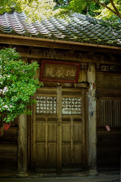 TAKAO_JINGOJI-08799