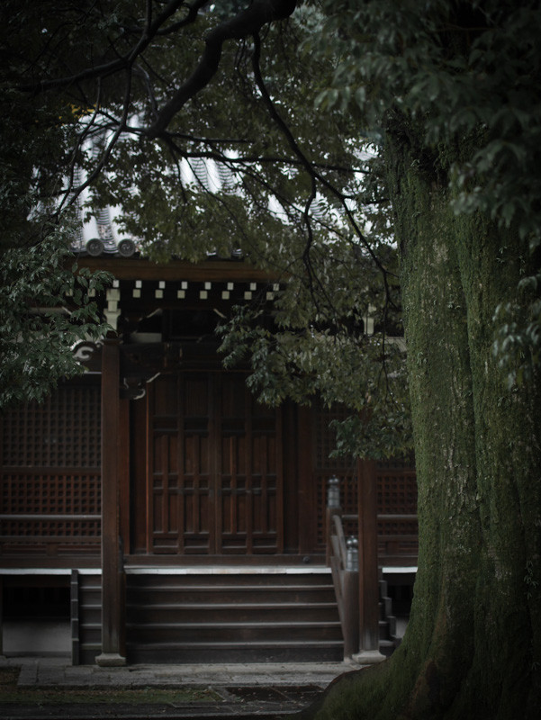CHISHAKUIN_RAIN-5