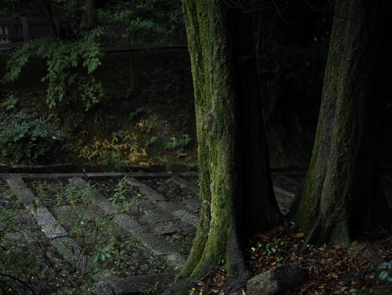 CHISHAKUIN_RAIN-2