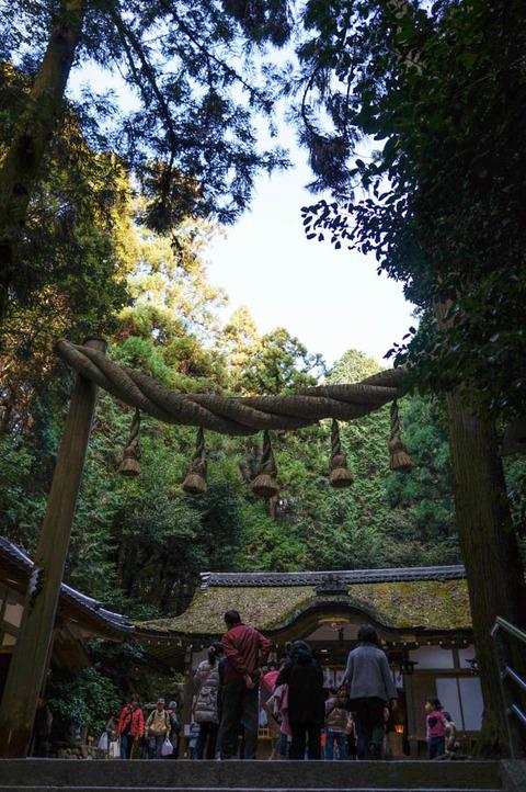 OMIWAJINJA_SAKURAI-4