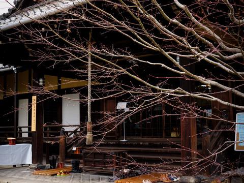 NAMIKIRIFUDOU_SHOURINJI-6