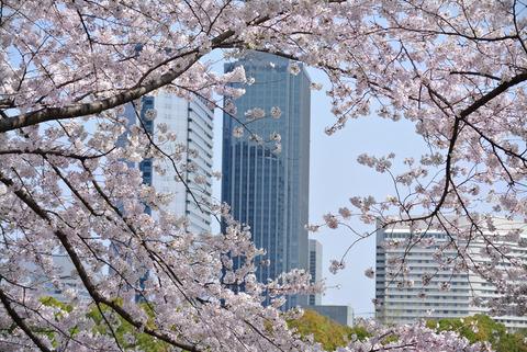 HANAMIRU_HITOTACHI-3