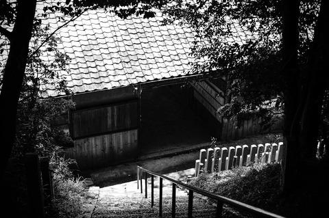 MITAJINJA_IGA-09743