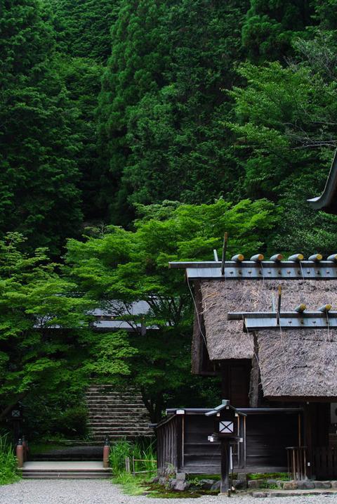 HYUGA_YAMASHINA-7242