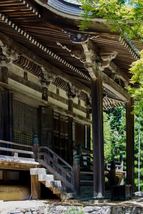 TAKAO_JINGOJI-08786