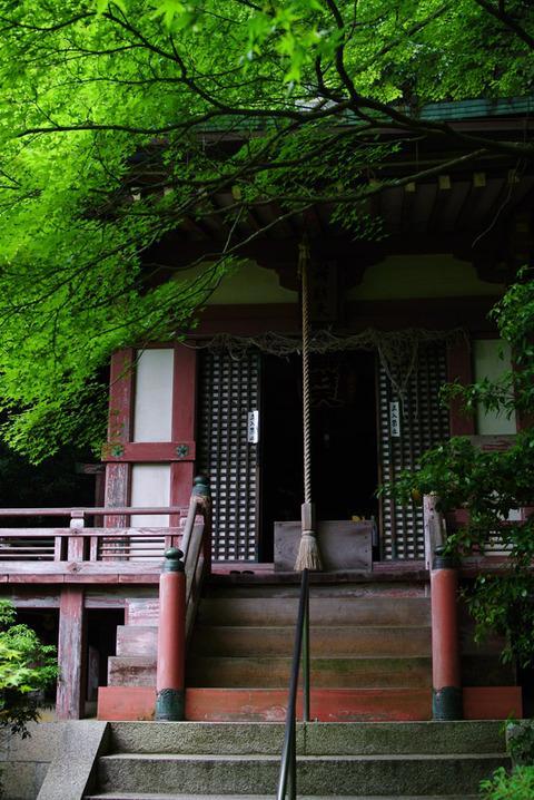 BISHAMONDO_YAMASHINA-5