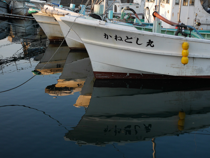 SHIROKO_PORT-5