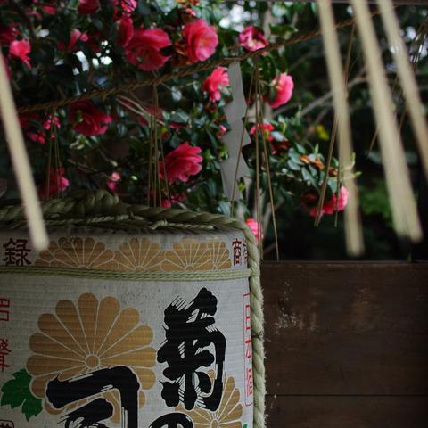 KYOTO_OHTOYO_INS-1