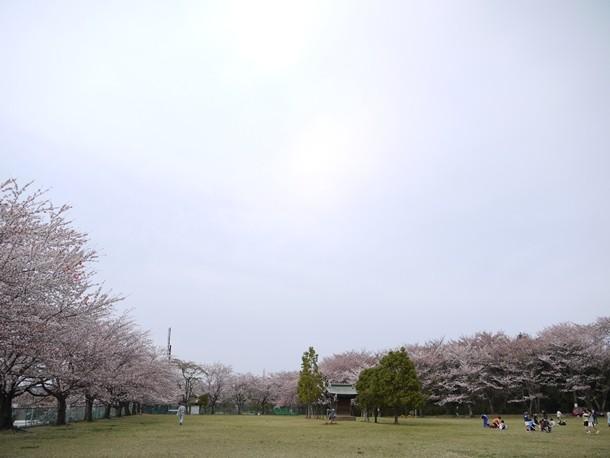 20110424005