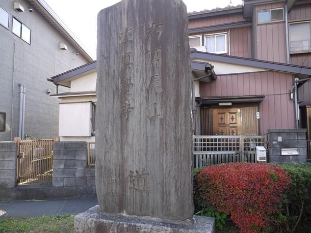 20101125004