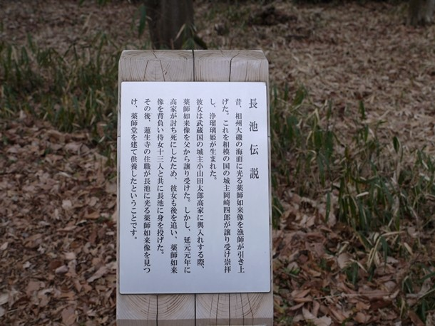 20110131_2_024