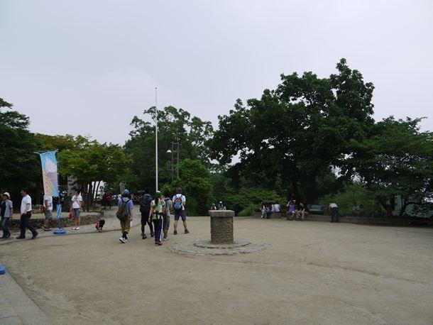 20100711008