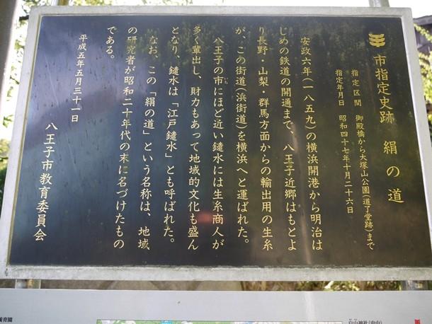 20100924016