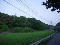 20100518_R005