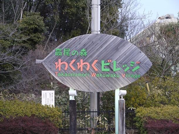20110323009