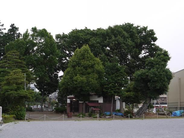 20100628001