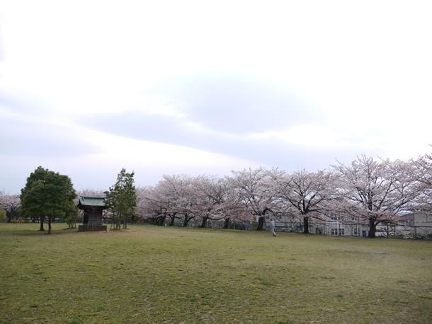 20110424001